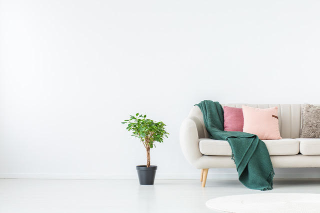 7 Budget Projects to Make Your Living Room Feel Twice as Bright, Whether You Have a Little Time or a Lot