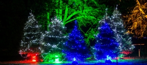 Holiday Lights Parad ...