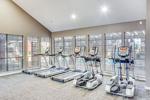 Luxurious features and amenities in Irving, TX