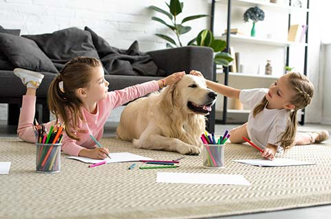 Pet-Friendly Apartments in Oakwood, GA