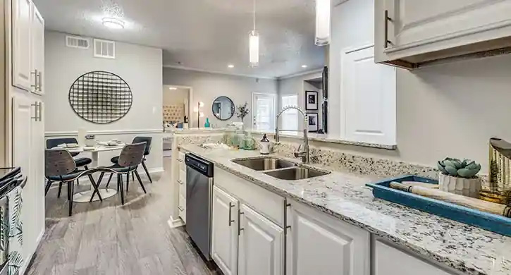 Two bedrooms apartments in Las Colinas, Irving