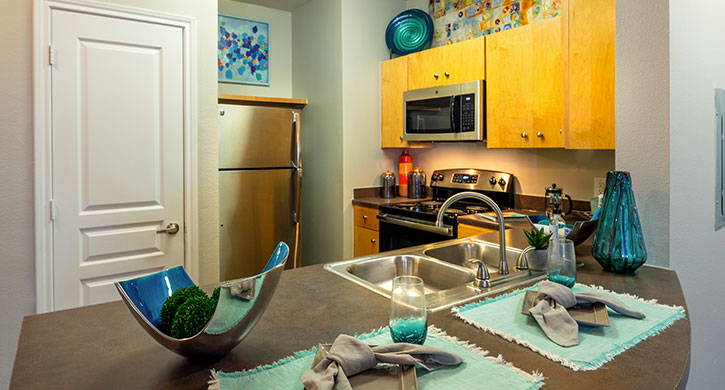 Efficiency apartments for rent in Houston, TX