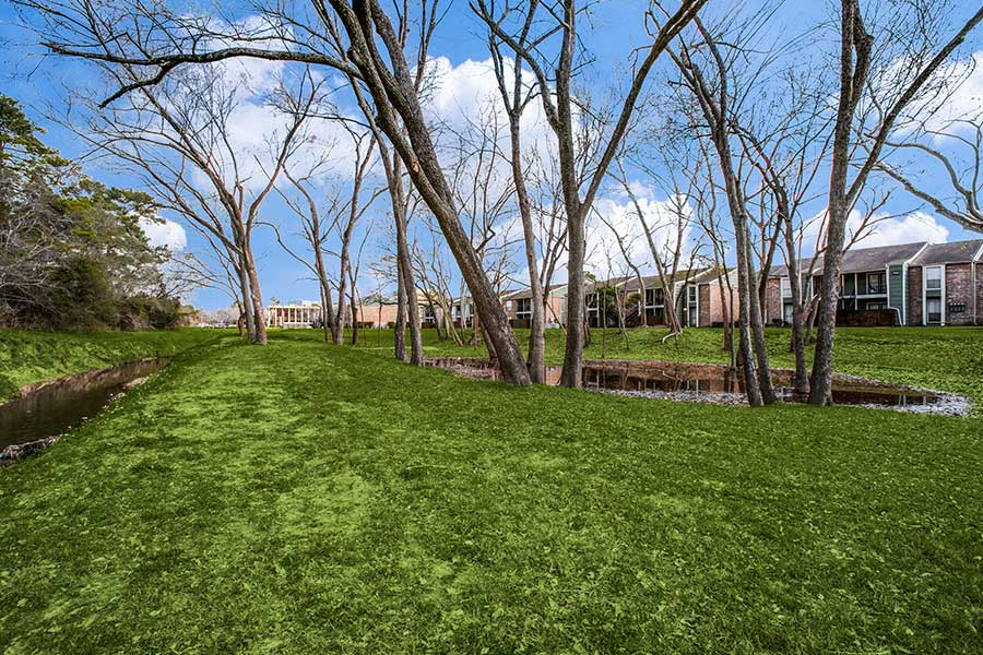 well-manicured landscape offers lots of shade