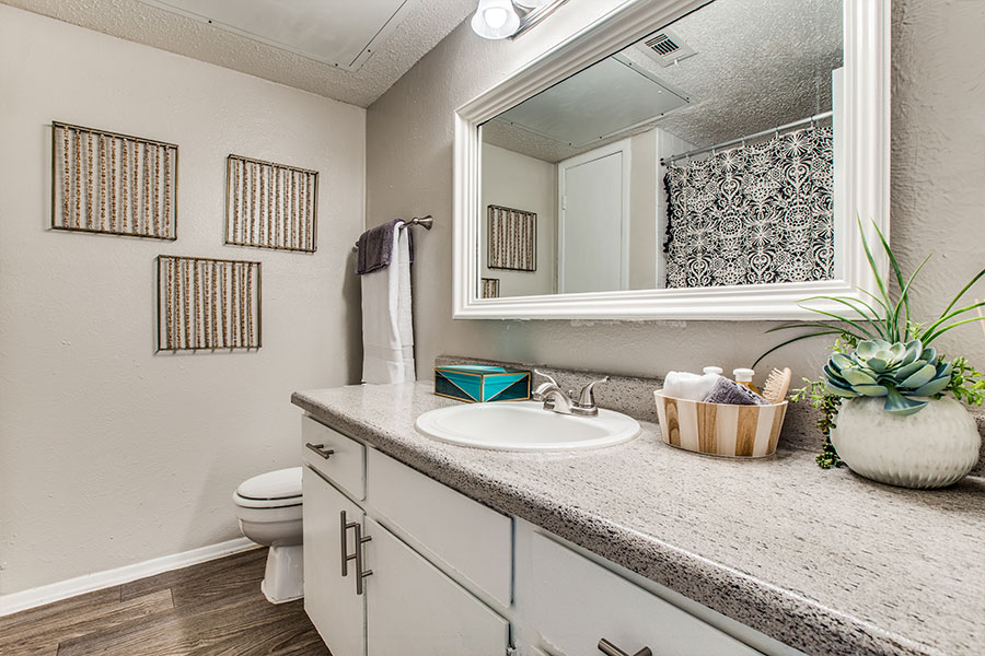Large Apartment Bathrooms in Dallas, Texas
