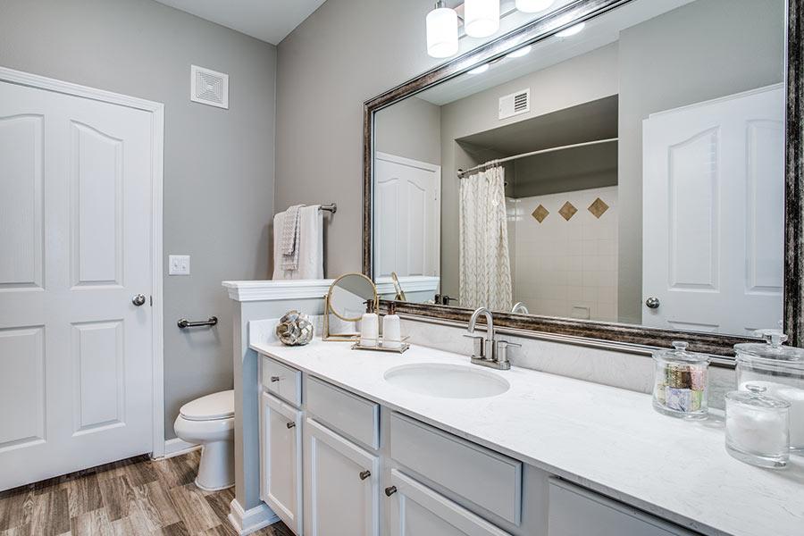 Spacious Apartment Bathrooms in Lewisville