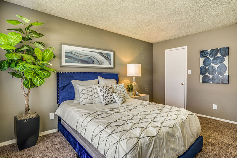 Bedrooms include carpet, large walk-in closets, and plenty of outdoor light.